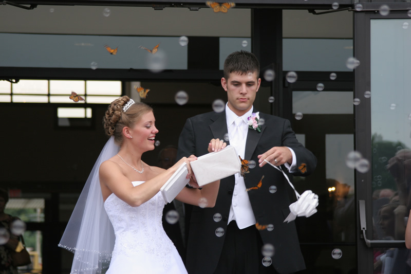 bride and groom are releasing live butterflies as they exit the church