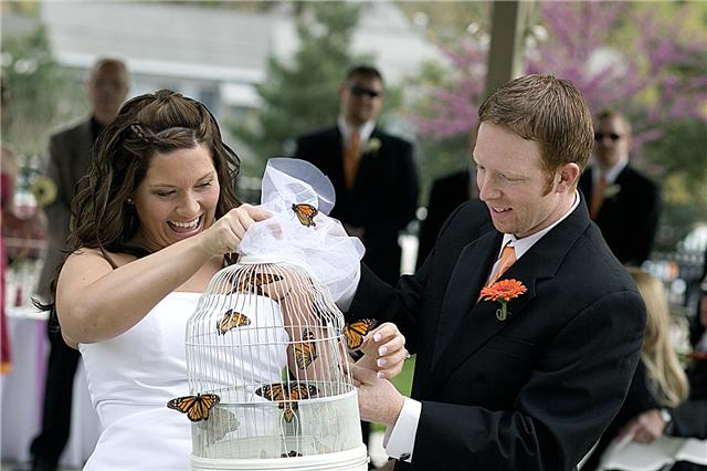 wedding butterfly release in lincoln ne
