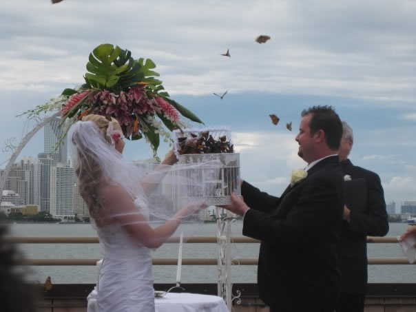sunset wedding butterfly release in miami fl