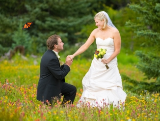 butterfly wedding photo shoot iowa