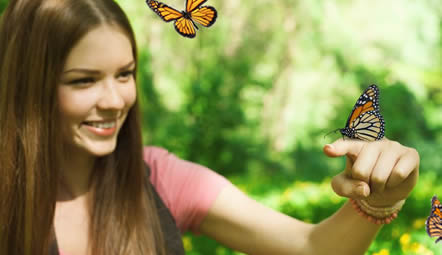 wyoming butterfly release